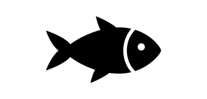 Fisk kan forlænge dit liv