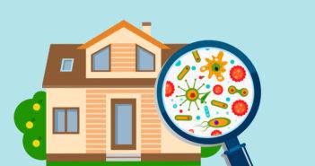 Svamp i dit hus